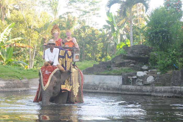 Boda Real Exoctica en el parque de elefante y palacio real / bodaenbali.com