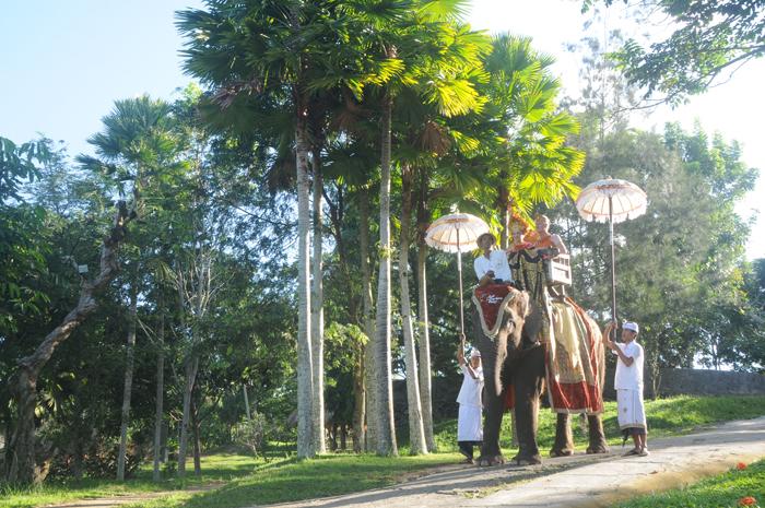 Boda real exotica balinesa  en el parque de elefante y palacio real